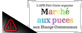 Marché aux puces par l'APE Curie